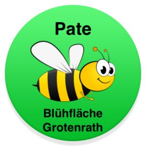 Pate - Blühwiese Grotenrath